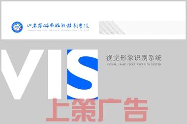 烟台VIS手册设计